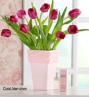 Tulips in Pink Vase